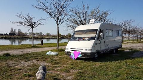 spot au bord du Rhône